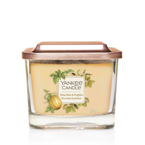 Аромасвеча Yankee Candle Elevation Тонка и тыква 347 г